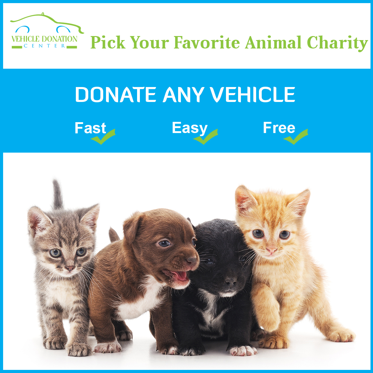 Car Donation For Pets