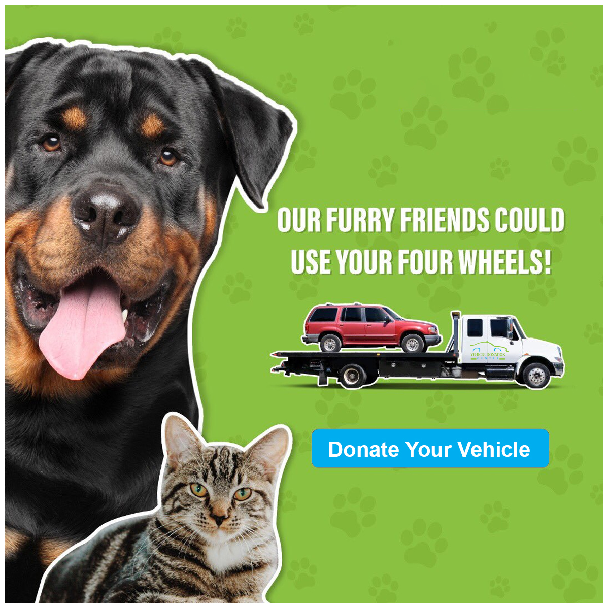 Donate Old Cars For Pets